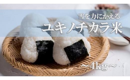 ユキノチカラ米(4㎏)