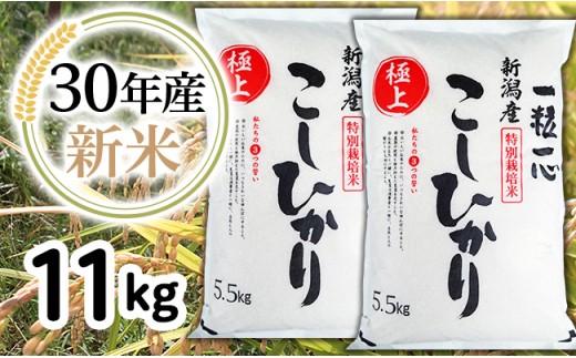 2-052【H30年産】新潟県長岡産特別栽培米コシヒカリ11kg