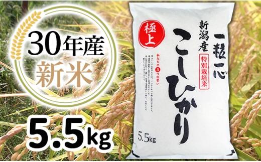 1-411【H30年産】新潟県長岡産特別栽培米コシヒカリ5.5kg