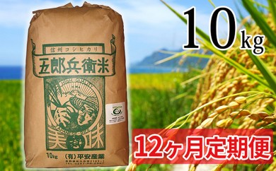 [№5865-0240] 【12ヶ月定期便】特別栽培米五郎兵衛米 10kg