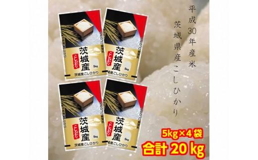 No.132 お米の王様!茨城県産コシヒカリ白米20kg(5kg×4袋) / お米 精米 こしひかり 茨城県 人気 おすすめ