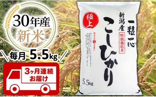 【3ヶ月連続お届け】新潟県長岡産特別栽培米コシヒカリ5.5kg【H30年産】