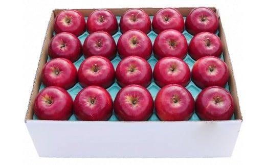 A11 りんご「紅玉」5kg(冷蔵)