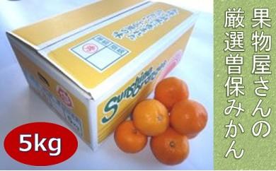 果物屋さんの厳選曽保みかん(5kg)