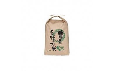 L7060-C【平成30年度産】宮城県登米市産ひとめぼれ精米10kg