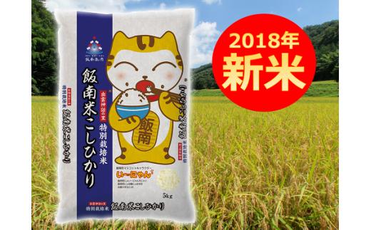 A-52特別栽培米コシヒカリ