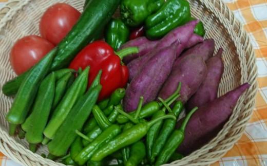 RK-62野菜7種のミニセット(ポン酢のおまけ付)