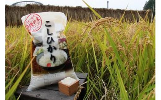 宮代産米コシヒカリ「村そだち」10kg