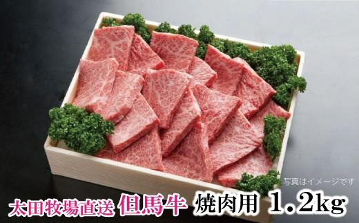 F-2【但馬太田牧場】特選但馬牛ロース焼肉用 1.2kg