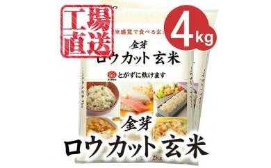 【30年産】金芽ロウカット玄米 4kg(2kg×2)
