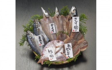 佐伯で愛され110年。老舗ひもの屋職人が選ぶ ごちそう干物 5種セット 『海の恵』
