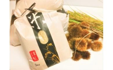 ◆【2018年産・新米予約】 契約栽培 近江米【玄米】 コシヒカリ 5kg× 1袋