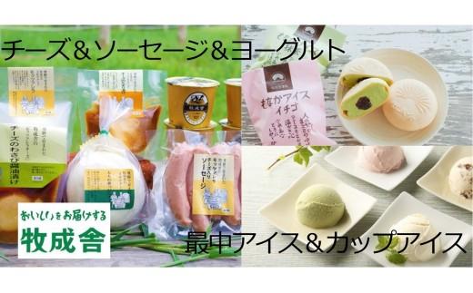 <牧成舎>飛騨のアイスクリーム&チーズ&ヨーグルトセット[D0001]