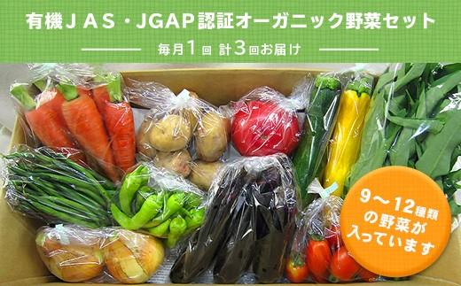 415 有機JAS・JGAP認証/オーガニック野菜セット毎月1回・計3回お届け・定期便