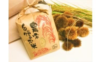 ◆【2018年産・新米予約】 契約栽培 近江米【玄米】 コシヒカリ 2kg× 1袋