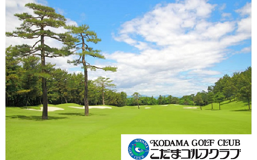 [№5535-0016]こだまゴルフクラブ 平日ゴルフプレー券【4枚】