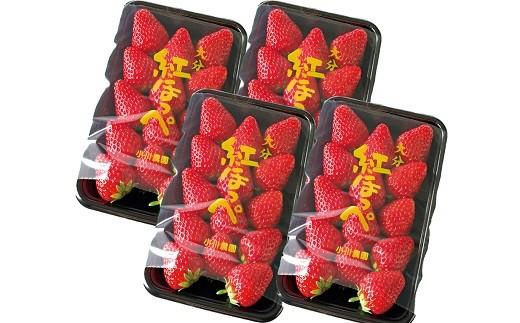 C-64 【先行予約】甘熟いちご「紅ほっぺ」・4パック入×1箱