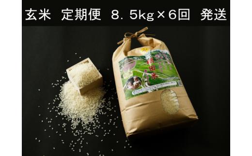 e-9 限定20セット ひらの棚田米 玄米定期便 総量51kg