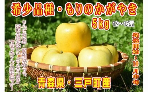 希少! りんご【もりのかがやき】 12~16玉【青森県・三戸町産】