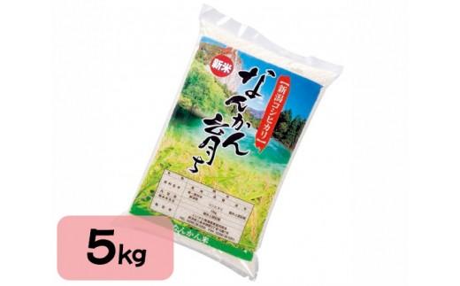 No.064 なんかん育ち「こしひかり米」5kg