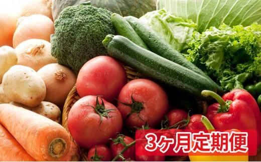 [№5865-0241]【3ヶ月定期便】とみずく農園の季節の野菜セット(9~10種類)