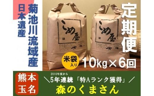 Z6 定期便 熊本県玉名産お米「森のくまさん」(10kg×6か月)