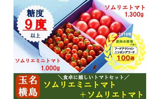 G2 熊本県玉名産ソムリエトマトセット(大玉トマト1.3kg+ミニトマト1kg)