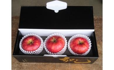 旬のりんご 3個入