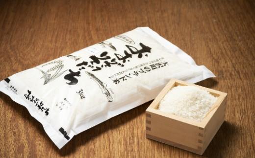 111:大沢町産ブランド米「おおぞうそだち」3kg
