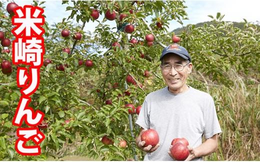 ご家庭用米崎りんご品種おまかせ3㎏【11~12月発送】