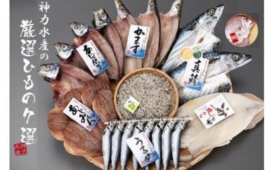 日本の食卓干物シリーズ なつかしいふるさとの味<7選>