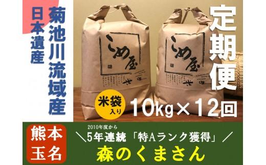 Z8 定期便 熊本県玉名産お米「森のくまさん」(10kg×12か月)