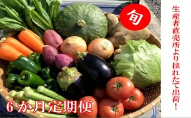 [№5682-0249]【奇数月6ヶ月定期便】生産者直売所発よりお届け!おまかせ旬のお野菜・果物セット!