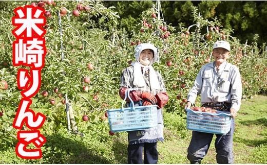 ご家庭用米崎りんご品種おまかせ3㎏【10~11月発送】