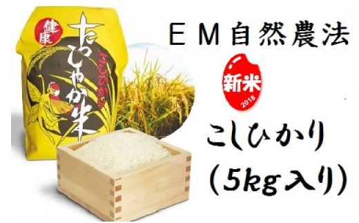 A-3102 EM自然農法たっしゃか米<コシヒカリ>5kg