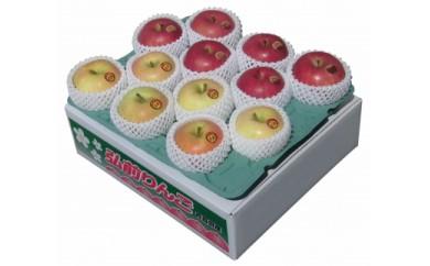 弘前産りんご詰め合わせ2~3種 贈答用(一段:14~18玉)