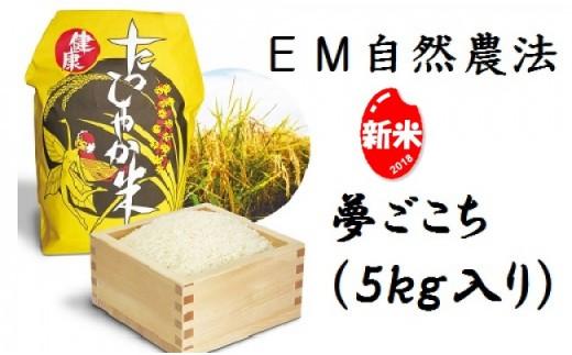 A-3103 EM自然農法たっしゃか米<夢ごこち>5kg