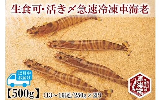 【12月中お届け】生食可・活き〆急速冷凍車海老 500g
