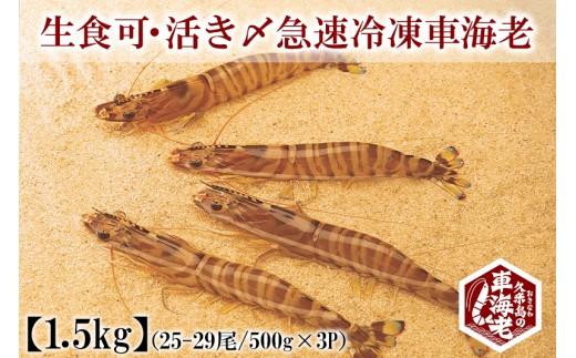 生食可・活き〆急速冷凍車海老 1.5kg (500g×3P)