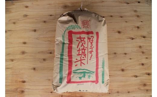 (497) 筑波山源泉 清流水ミルキークイーン獅子米(玄米)30kg【30年産】