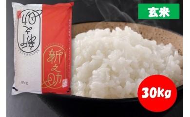 【新潟県魚沼産】新之助 玄米30kg