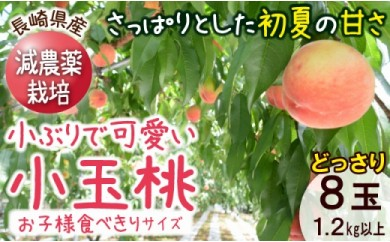 AC54-C長崎県産 特別栽培 小玉ハウス桃(Mサイズ)【4パック】 1.2kg以上 ※5月下旬~6月中旬に出荷予定