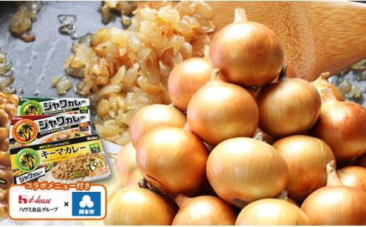 D019:淡路島産たまねぎと、ハウス食品カレー(ジャワカレー、キーマカレー)のセット