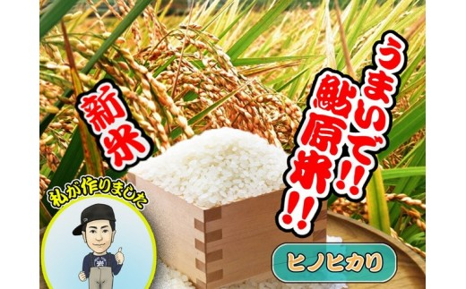 BH02:淡路島 鮎原米 ヒノヒカリ 5kg