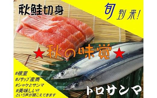 CB-05006 【北海道根室産】生冷凍サンマ5本入×4袋・秋鮭切身3切れ×3P