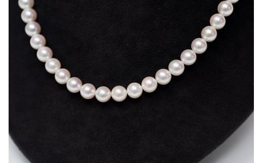 Q-002.7.5~8mmアコヤ真珠ネックレス