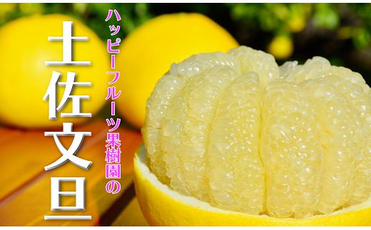 ハッピーフルーツ果樹園の土佐文旦(家庭用)10kg