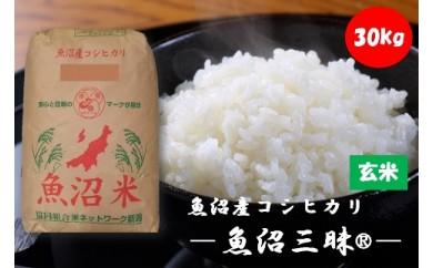 【魚沼産コシヒカリ】魚沼三昧®玄米 30kg