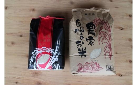 (503) 獅子米味比べCセット コシヒカリ(精米)10kg+いのちの壱(精米)5kg