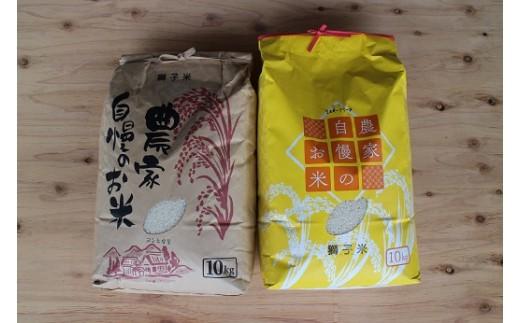 (501) 獅子米味比べAセット コシヒカリ(精米)10kg+ミルキークイーン(精米)10kg